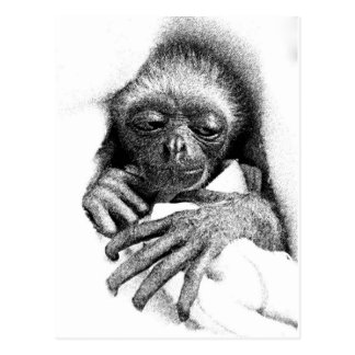Sleepy Gibbon Baby Postcard