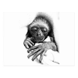 Sleepy Gibbon Baby Postcard