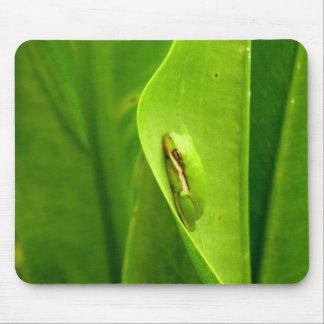 Sleepy Green Frog Mouse Pad