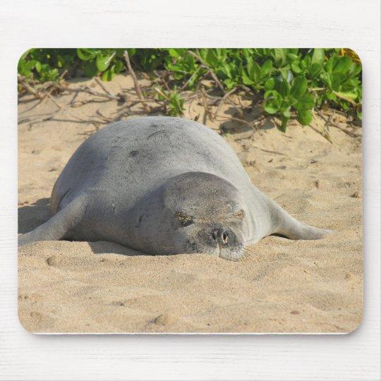 Sleepy Hawaiian Monk Seal Mouse Pad