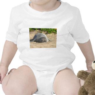 Sleepy Hawaiian Monk Seal T-shirts