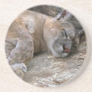 Sleepy Head Drink Coasters