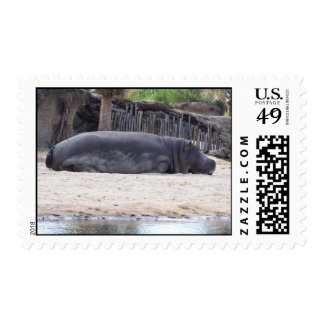 Sleepy Hippo postage