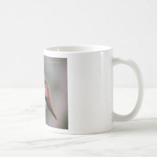 Sleepy Hummingbird Classic White Coffee Mug
