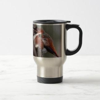 Sleepy Hummingbird 15 Oz Stainless Steel Travel Mug