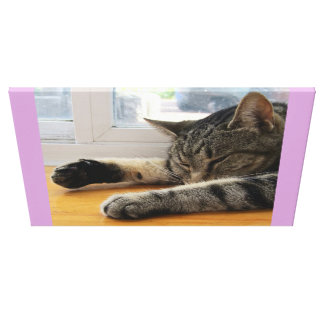 Sleepy Indigo Canvas Print