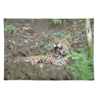 Sleepy Jaguar Placemat