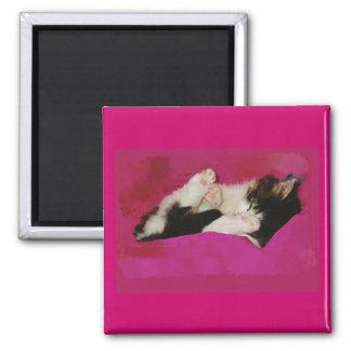 Sleepy Kitten in Pink 2 Inch Square Magnet