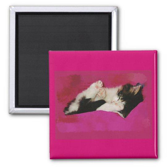 Sleepy Kitten in Pink Magnet