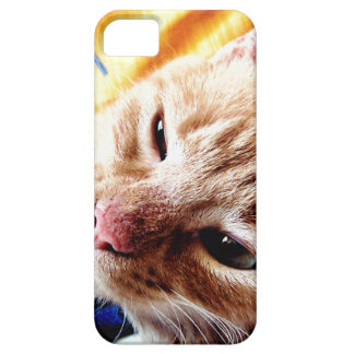 Sleepy Kitten iPhone SE/5/5s Case