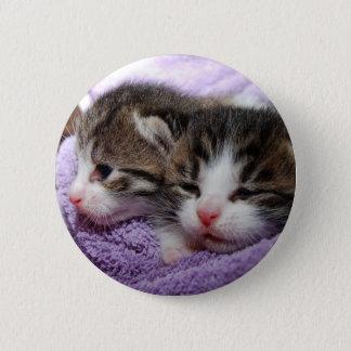 Sleepy kittens button