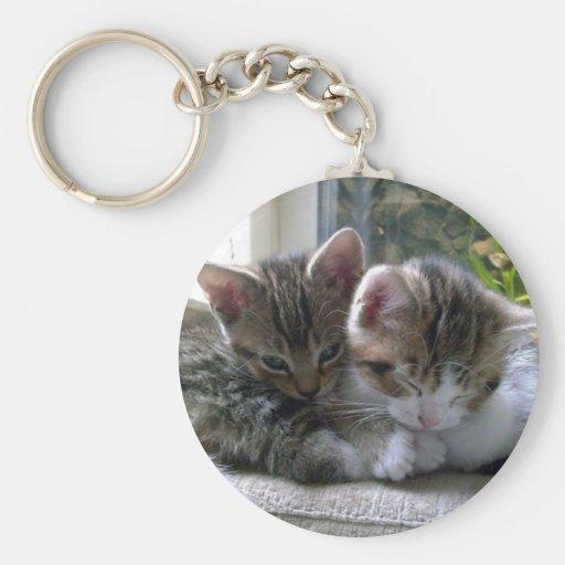 Sleepy Kittens Key Chain