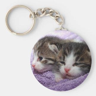 Sleepy kittens keychain