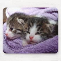 Sleepy kittens mouse pad