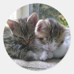 Sleepy Kittens Round Sticker