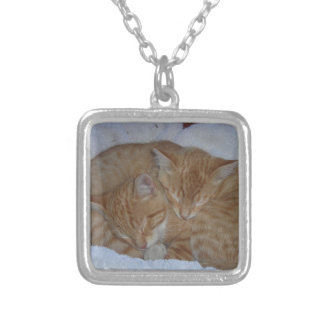 Sleepy kittens silver plated necklace