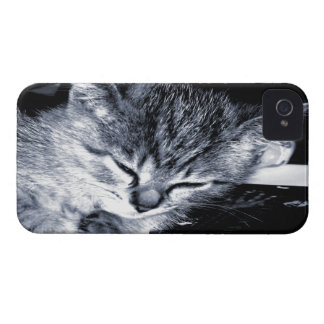 Sleepy Kitty 2 BlackBerry Bold Case
