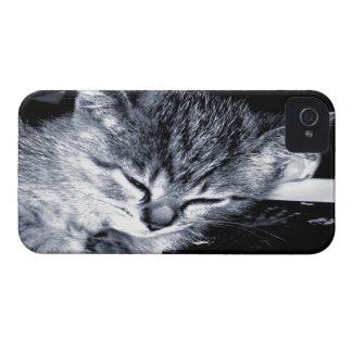 Sleepy Kitty 2 BlackBerry Bold Case