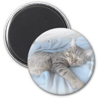 Sleepy Kitty 2 Inch Round Magnet