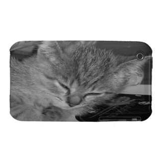 Sleepy Kitty 2 iPhone 3G/3GS Case-Mate Barely Ther Case-Mate iPhone 3 Cases