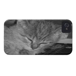 Sleepy Kitty 2 iPhone 4 Case
