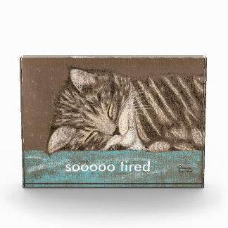sleepy kitty acrylic award