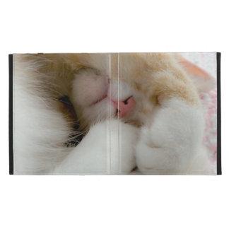 Sleepy Kitty iPad Folio Case