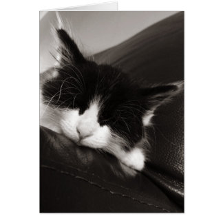 Sleepy Kitty Cat Card