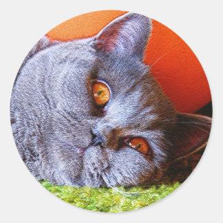 Sleepy Kitty Classic Round Sticker