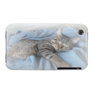 Sleepy Kitty iPhone 3G/3GS Case-Mate Barely There iPhone 3 Case