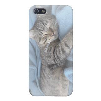 Sleepy Kitty iPhone 4 Speck Case