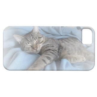 Sleepy Kitty iPhone 5 ID Case