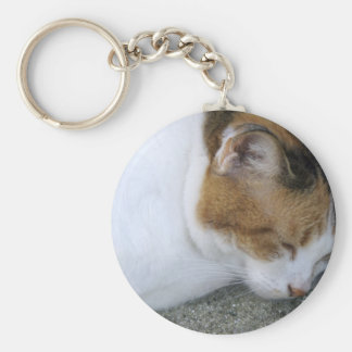 Sleepy Kitty Key Chains