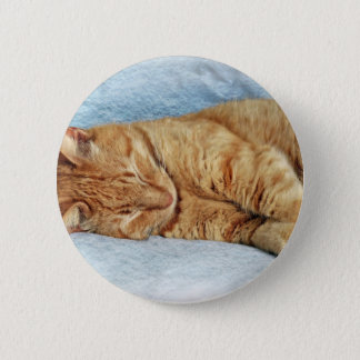 Sleepy Kitty Pinback Button