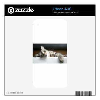 Sleepy Kitty Skins For iPhone 4