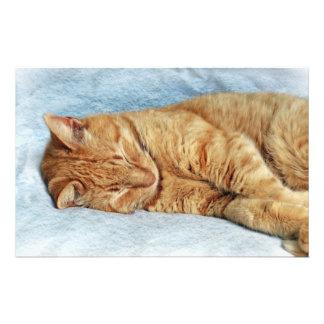 Sleepy Kitty Stationery