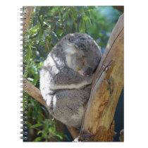 Sleepy Koala Notebook