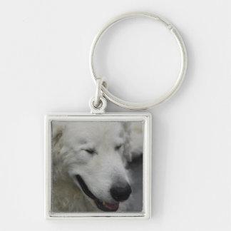 Sleepy Kuvasz Dog Key Chains
