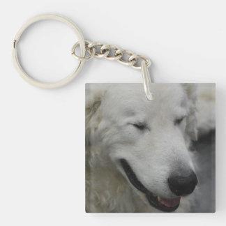 Sleepy Kuvasz Dog Acrylic Keychain