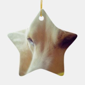 Sleepy Labrador Ceramic Ornament