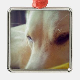 Sleepy Labrador Metal Ornament