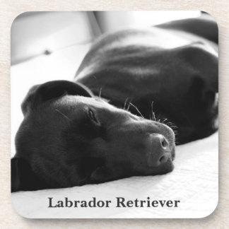Sleepy Labrador Retriever Beverage Coaster