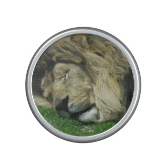 Sleepy Lion Bluetooth Bumpster Speaker