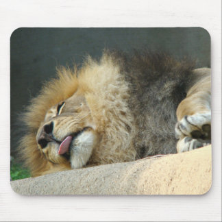 Sleepy lion sticking out the tongue Mousepad