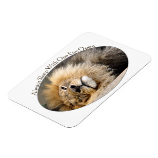 Sleepy Lion Wink Flexible Magnet