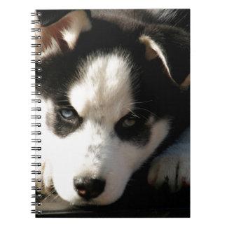 Sleepy Lop Eared Siberian Husky Puppy Note Book