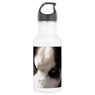 Sleepy Lop Eared Siberian Husky Puppy Water Bottle