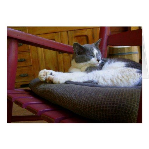 Sleepy Miss Biscuit / Notecard Card