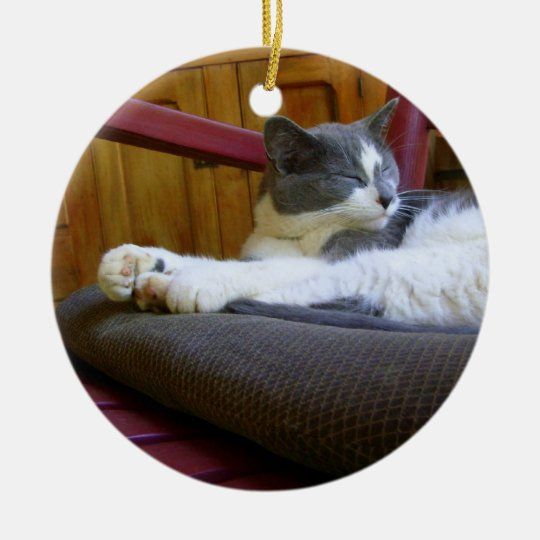 Sleepy Miss Biscuit / Ornament