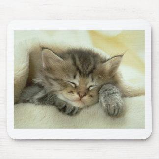 Sleepy Nap Time Kitten Mouse Pad